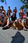 Vancouver Pride Parade 2014 - Dog by Hxes