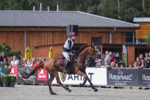 3DE Cross Country Galop High Speed by LuDa-Stock