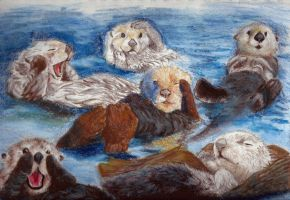 Sea Otter Sketches 01 by RuntyTiger