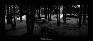 Park Called Loneliness by UrbanRural-Photo