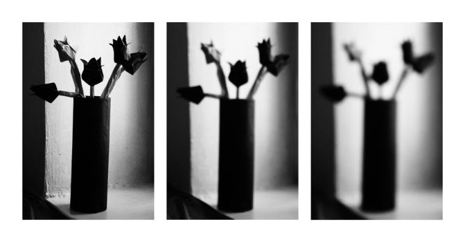 Triptych with black paper flowers by Ufimtseva