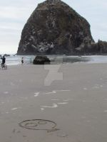 Skully on Cannon beach by cynfullpryde