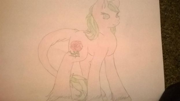 rose petal by goldenorb92