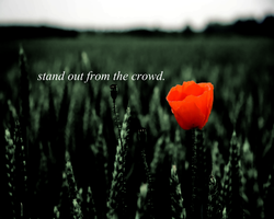 Stand out from the crowd. by iammoeart