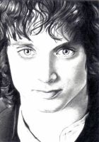 Frodo by Dr-Horrible