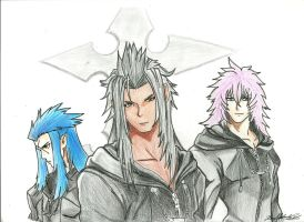Organization XIII by XionNobodyGirl