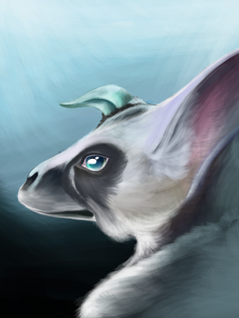 Trico! (+Video) by VexisDuHast