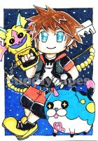 Sora Trading Card by CuddlyCapes