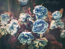 Blue Frosted Fantasy by Miranda-Doughty