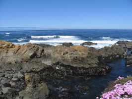 Mendocino Shore II by Cynnalia-Stock