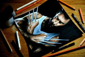 Drawing Wolverine by Heatherrooney