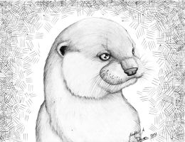 Otter by HDevers