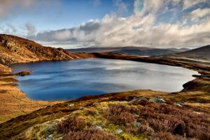 LLyn Arening by CharmingPhotography