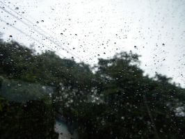Rainy Days in Costa Rica3 by AudiVideTace