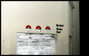 Choose your pokeball by TheArtofBlouh