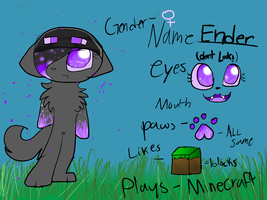 for icey -ender ref by catsp00ky