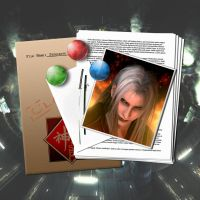 Sephiroth's File by ChaosNet1701