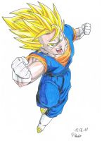 Vegetto Attack coloured II by Vegetto90