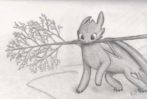 Toothless Night Fury - HTTYD by HiccToothFan
