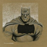 Dark Knight Batman by TimTownsend