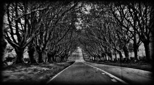 the way ahead by awjay
