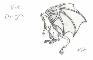 Rat Dragon by spiderling00