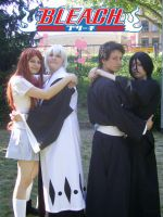 Bleach in Love by Aiko-Mustang