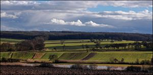 Colors of winter fields by LiveInPix