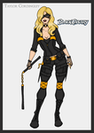 Justice League - Black Canary Redesign Redux by Femmes-Fatales