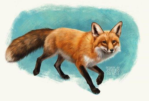 Foxwalk by Lhuin