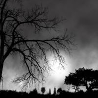 Grey time by ultraviolet1981