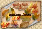 Autumn Leaves by roula33
