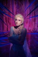 Elsa - Frozen Heart by adelhaid