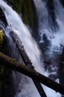 Falls and Logs by AFL