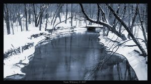 The winter blues by mr-sarcastic1984