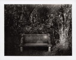 -park bench- by fangedfem