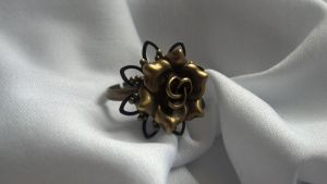 Steampunk Ring 24 by Ronigirl