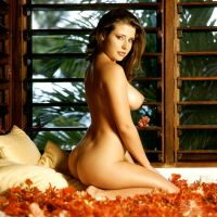 bed of flowers 1 by markdaughn