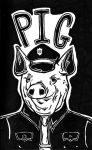 Pig by mikescttmoore