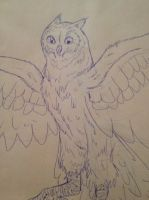 Owl Doodle by The-Lovestruck-Fox