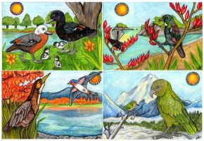 NZ through the Seasons by lemurkat