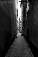 Dark alley by The-proffesional