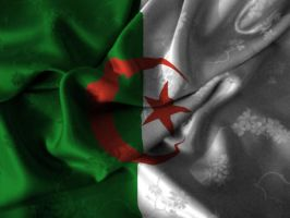 Flag of ALGERIA by OAMstyle