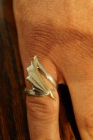 Silver & Gold ring by Nosallis