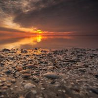 The Tide by Oer-Wout