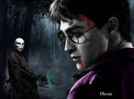 Harry vs Voldemort by Dhesia by HogwartsArt