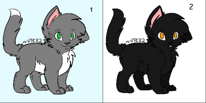 Chloe and Midnight ( adopted from FoxWarrior23 ) by NaTabhairSuas