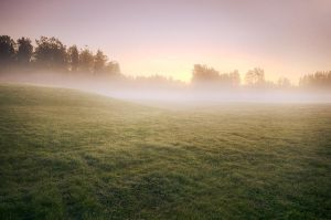 Fuzzy Sunrise by MikkoLagerstedt