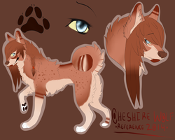Cheshire Wolf Reference 2014 by CheshireWolf97