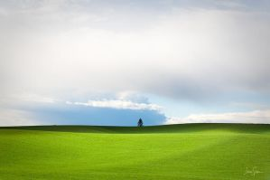 Palouse by jessespeer